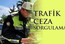 Trafik Cezası Sorgulama